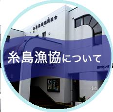 糸島漁協について